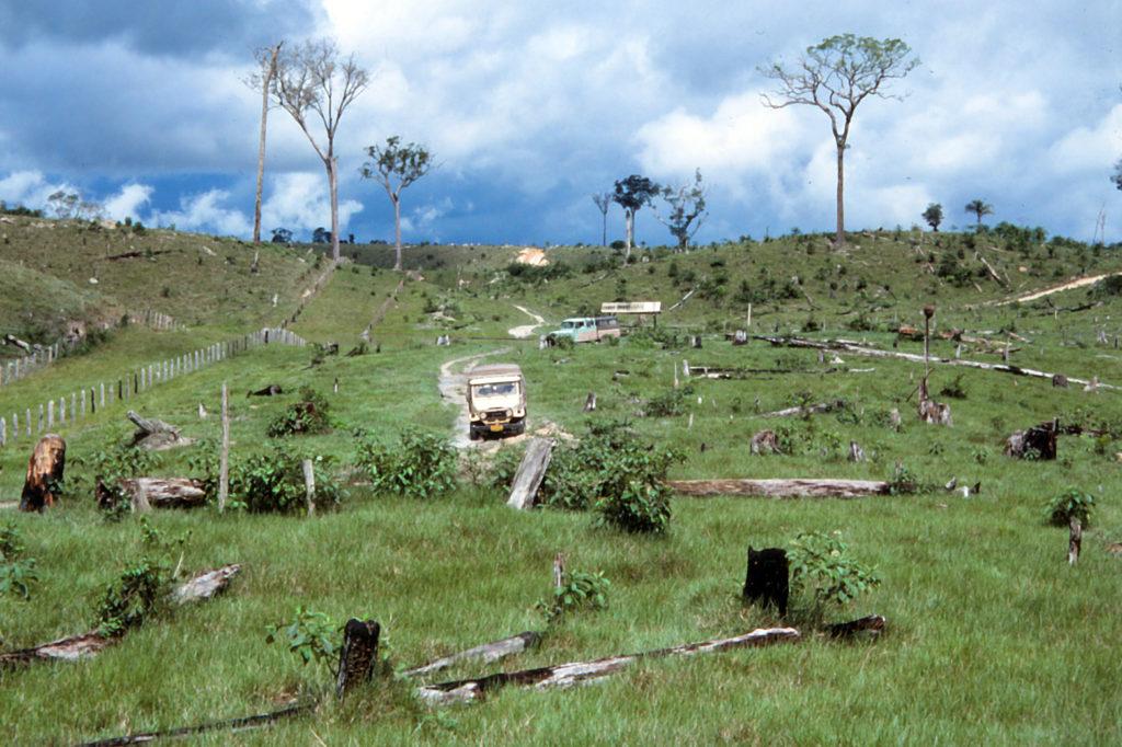 """Die zwei Toyota Bandeirantes des WWF in einem der """"Entwicklungsgebiete"""" nördlich von Manaus"""